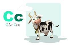 Caw farm animal with alphabate Stock Photo