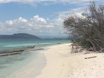 Cay ямайка известки Playa стоковое изображение