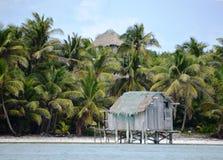Cay för gråambra för sikt för vattenhydda 2nd i Belize Royaltyfri Foto