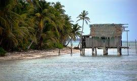 Cay för vattenhyddagråambra i Belize Fotografering för Bildbyråer