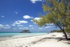 Cay Snorkeler de Gaulding foto de stock