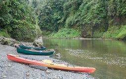 Cayaking Whanganui flod Fotografering för Bildbyråer
