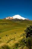Cayambe эквадор Стоковое фото RF