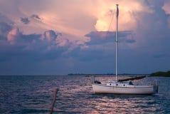 Caye Caulker Belize Royaltyfria Foton