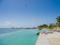 Caye caulker belize caribbean Royalty Free Stock Photography