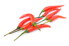 Cayenne. Fresh and spicy cayenne on white Royalty Free Stock Image