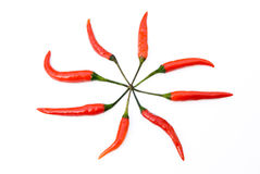 Cayenne. Fresh and spicy cayenne on white Stock Photos