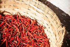 Cayenne chili peppers Stock Photos