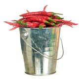 Cayenne pepper. Hot red cayenne pepper in pail against white background royalty free stock image