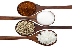 Cayenne pepper, salt, pepper and sugar Royalty Free Stock Photography