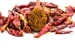 Cayenne pepper on wood spoon and dry pepper Stock Image