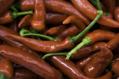 Cayenne peppers Stock Image