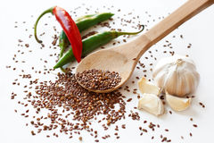 Cayenne peppers, flax seeds, coriander and garlic Royalty Free Stock Photos