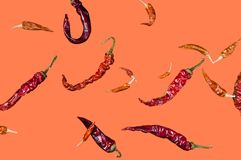 Cayenne red chilli pod on coral background, isolate stock photography