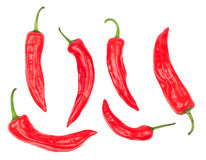 Cayenne on white background Royalty Free Stock Images