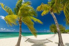 Cayman Islands. 7 mile beach, Grand Cayman royalty free stock photos