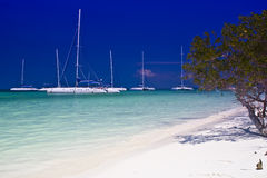 Cayo Blanco Stock Photography