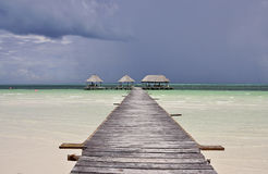 Cayo Coco in Cuba. Cayo Coco is an island in central Cuba, known for its all inclusive resorts Stock Photography