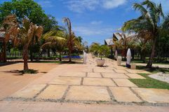 Cayo-Cocos Kuba Stockfotografie