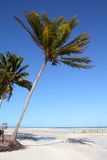 Cayo Guillermo, Cuba Royalty Free Stock Images