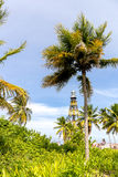 Cayo Jutias en el del noroeste de Cuba Fotos de archivo libres de regalías