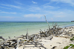 Cayo Jutias (Pinar del Rio, Куба) Стоковое фото RF