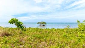 Cayo Jutias w północno-zachodni Kuba Obraz Royalty Free