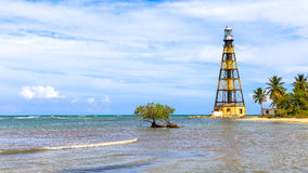 Cayo Jutias w północno-zachodni Kuba Obraz Stock