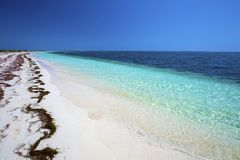 Cayo Largo del Sur, Cuba. Cayo Largo del Sur, beautiful white sand beach with warm turquoise waters of the Caribbean Sea, Cuba stock photography