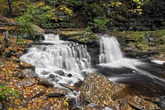 Cayuga Falls. A beautiful split waterfall in Ganoga Glen at Pennsylvania`s Ricketts Glen State Park, flows through an autumn landscape blanketed in autumn Stock Photos