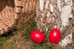 Caza de Pascua fotografía de archivo libre de regalías