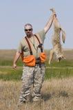 Caza del coyote imagen de archivo libre de regalías