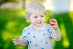 Caza del niño pequeño para el huevo de Pascua en jardín de la primavera el día de Pascua Imagen de archivo libre de regalías