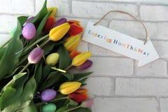 Caza multicolora del huevo de Pascua de los tulipanes Imagenes de archivo