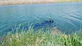 Cazador subacuático en la superficie de un pequeño río almacen de video