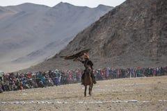 Cazaque Eagle Hunter dourado na roupa tradicional, com uma águia dourada em seu braço Imagens de Stock