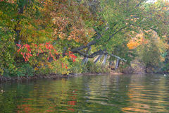 Cazenovia Lake Autumn Shoreline. This is a view of the shoreline of Cazenovia Lake, in New York State. The photo was taken from my kayak royalty free stock photos