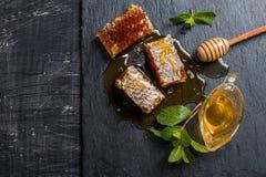 Cazo de la miel, del panal, de la menta y de la miel Imagen de archivo libre de regalías