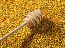 Cazo de madera de la miel sobre el polen de la abeja Foto de archivo libre de regalías