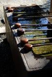 Cazo de madera del agua Fotografía de archivo libre de regalías