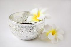 Cazo de plata del agua con la flor Fotos de archivo libres de regalías