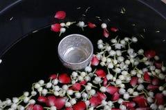 Cazo del agua con el jazmín en el agua Imágenes de archivo libres de regalías