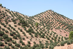 Cazorla and Segura mountain range,Jaen,Andalusia,Spain Stock Photos