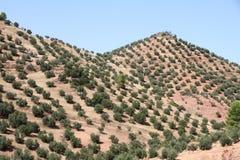 Cazorla and Segura mountain range,Jaen,Andalusia,Spain Stock Images