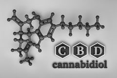 CBD cannabidiol structure in black and white. Illustration with CBD molecule and chemical structure in black and white color. 3d illustration vector illustration