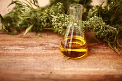 Free CBD Oil Bottle And Hemp Products Cannabis Stock Photos - 104553623