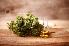 CBD oil bottle and hemp products cannabis Royalty Free Stock Photography