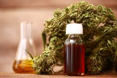 CBD oil bottle and hemp products cannabis Stock Images