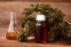 CBD oil bottle and hemp products cannabis stock image