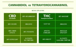 CBD vs infographic för medicinska applikationer för THC horisontal stock illustrationer
